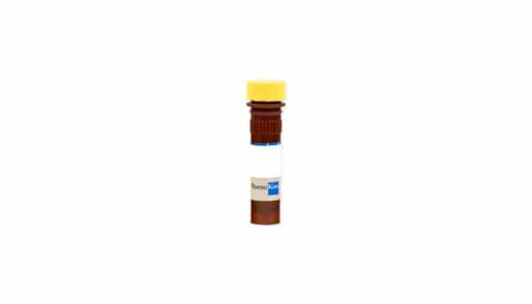 Caspase-Family Inhibitor Z-VAD-FMK (10 mM)